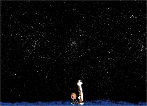 Calvin and Hobbes Starry Sky